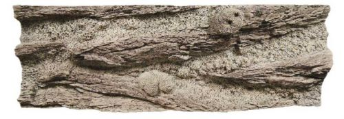 Red Sea Reef 150x50 cm White Coral